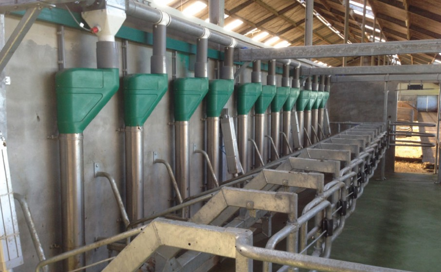 Less time and less noise in new parlour