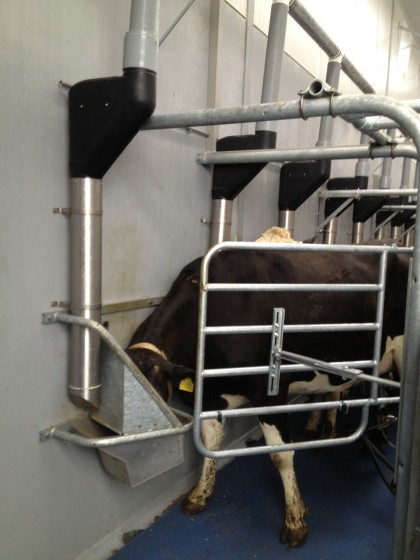 The effects of in-parlour feeding